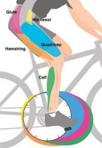 biomecanica rodilla del ciclista